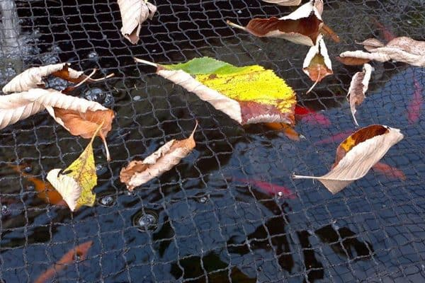 Get Your Pond Ready For Fall pond cover nets pond covers netting