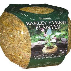 Summit Barley Straw Large