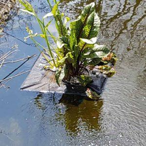 Floating Plant Basket