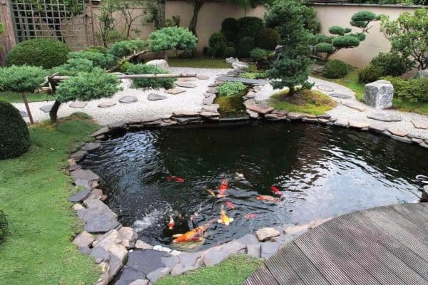 Choosing a Location for your Pond