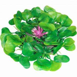 Floating Hyacinth Pad