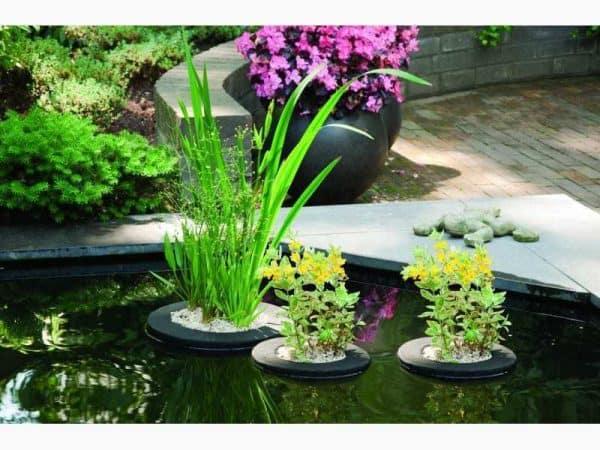 Floating Pond Plant Basket