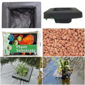 plant Island kit