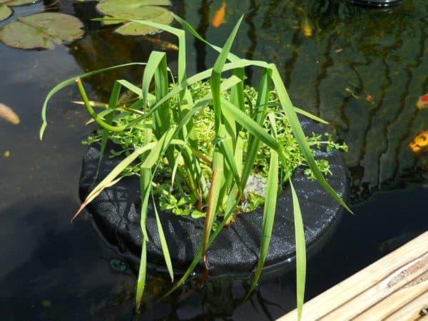 Velda 10 Inch Floating Plant Island Round