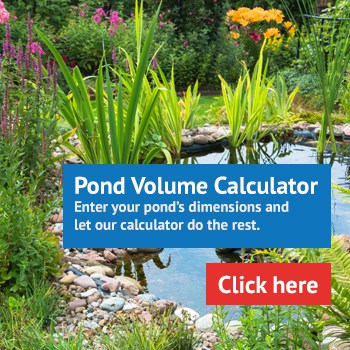 Pond Volume Calculator