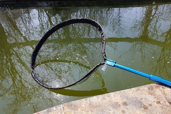Choosing the Right Pond Net
