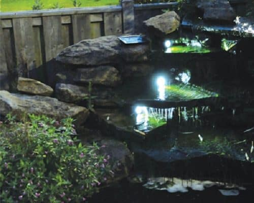 The Benefits Of Building a Pond