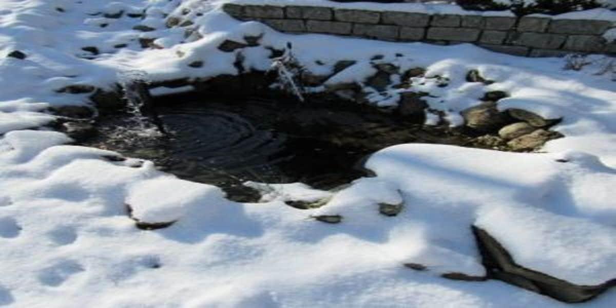 winter pondh2o
